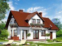 Проект дома-313